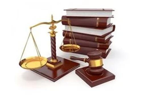 юристы 11.jpg