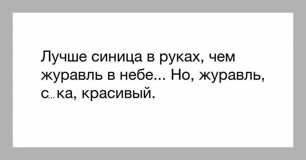 5ryw.jpg