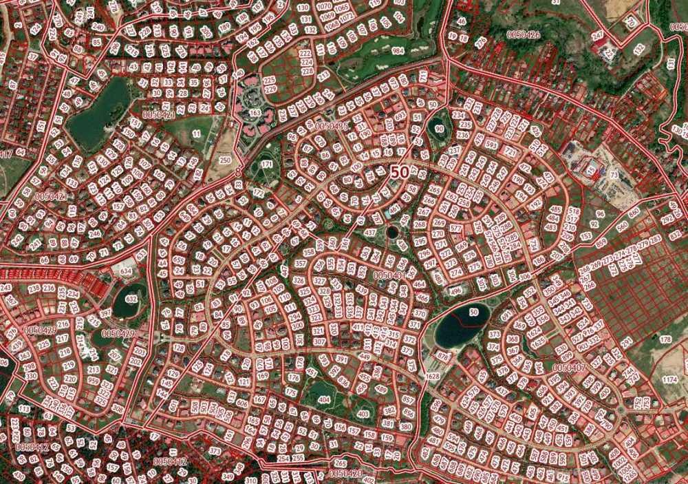 Землевейники.jpg